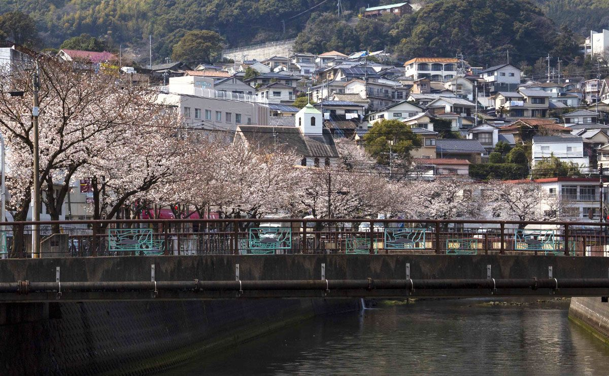 asebo River during a rare non-rainy day in cherry blossom season.